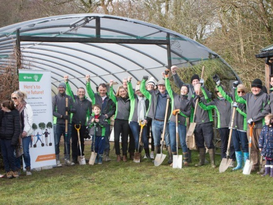 BAM plants 9,000 trees around Ireland as part of 150-year celebration
