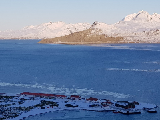 Sub-Antarctic island celebrates Shackleton Day with New Wharf for the RRS Sir David Attenborough