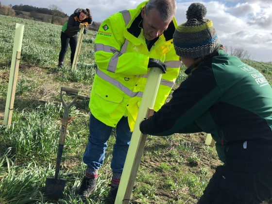 Construction company celebrates 150th birthday by planting over 5,000 trees in Warwickshire and Worcestershire